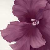 Violet Flower I Posters by Yvonne Poelstra-Holzhaus