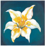 Yellow Lily Print by  Urpina