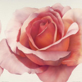 Magnificence III Print by Yvonne Poelstra-Holzhaus