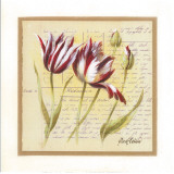Tulipes Art by Pascal Cessou