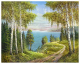 Birches At The Lake I Posters by Helmut Glassl