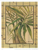 Tropical Plant IV Print by L. Romero
