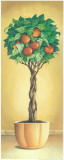 Apple Tree Prints by  Eraso