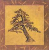 Cano - Tree II Obrazy