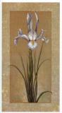 Flores Sobre Lino I Prints by A. Lopez