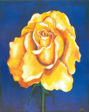 Great Golden Rose Print by  Ferrer