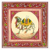 Tibetan Camel Prints