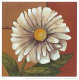 Daisy I Prints by  Ranz