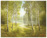 Pond Spinka Prints by Helmut Glassl