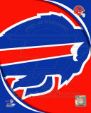 Buffalo Bills 2011 Logo Photo