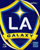 2011 LA Galaxy Team Logo Photo