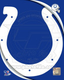 Indianapolis Colts 2011 Logo Photo