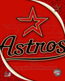 2011 Houston Astros Team Logo Photo