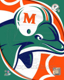 Miami Dolphins 2011 Logo Photo