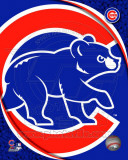 MLB 2011 Chicago Cubs Team Logo Photo