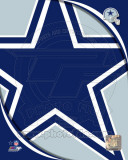 Dallas Cowboys 2011 Logo Photo