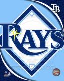 2011 Tampa Bay Rays Team Logo Photo
