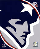 New England Patriots 2011 Logo Photo