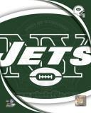 New York Jets 2011 Logo Photo