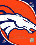 NFL Denver Broncos 2011 Logo Photo