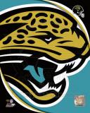 Jacksonville Jaguars 2011 Logo Photo