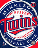 2011 Minnesota Twins Team Logo Photo