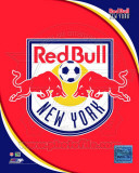 2011 New York Red Bulls Team Logo Photo