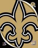 New Orleans Saints 2011 Logo Photo