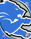 Detroit Lions 2011 Logo Photo