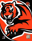 NFL Cincinnati Bengals 2011 Logo Photo