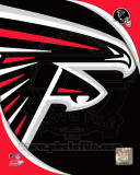 Atlanta Falcons 2011 Logo Photo