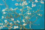 Blühende Mandelbaumzweige, Saint Rémy, ca. 1890 Leinwand von Vincent van Gogh