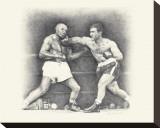 Rocky Marciano Leinwand von Allen Friedlander