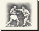 Rocky Marciano Stretched Canvas Print by Allen Friedlander