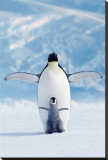 Penguin and Chick Stretched Canvas Print