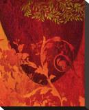 Georgia Cochineal I Leinwand von Michael Timmons