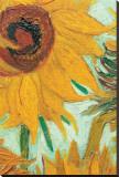 Twelve Sunflowers (detail) Impressão em tela esticada por Vincent van Gogh