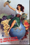 Adani Fruits Stretched Canvas Print
