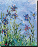 Irises (detail) Stretched Canvas Print by Claude Monet