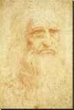 Self-Portrait Stretched Canvas Print by  Leonardo da Vinci