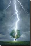 Lightning Striking Tree Stretched Canvas Print