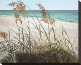 Sea Oats Stretched Canvas Print by Pamela Jablonski