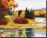 Colorado Fall Dream Stretched Canvas Print by Judith D'Agostino