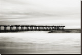 Hermosa Pier Stretched Canvas Print by Shane Settle