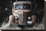 Old Truck in a Field Stretched Canvas Print by Shane Settle