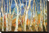 Birch Grove II Stretched Canvas Print by Sharon Pitts