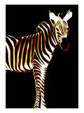 Zebra in Black Vertical Giclee Print by Ikuko Kowada