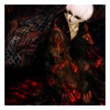 Muerte Lámina giclée por Meiya Y