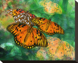 Orange Butterfly Fantasy II Stretched Canvas Print by Melinda Bradshaw
