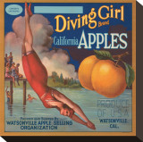 Diving Girl Brand California Apples Stretched Canvas Print